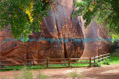 Moab, Utah - Petroglyphs along the river   Photo #5162