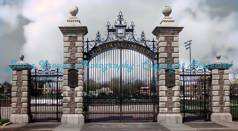 "Washington Univ - The  Francis Field; (Impresionist Version) - Sized to  10""X20""  Photo# 236-D"