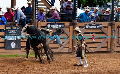 359 -  Professional Bull Riders Rodeo - Deadwood, SD