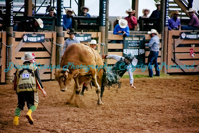 385 -  Professional Bull Riders Rodeo - Deadwood, SD
