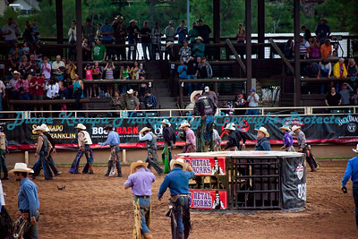 271 - Shark Cage for Rodeo Photographer