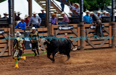 364 -  Professional Bull Riders Rodeo - Deadwood, SD