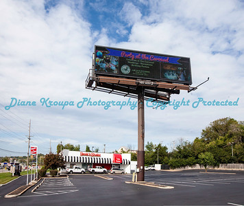 Diane's Billboard
