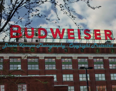 Budweiser Brewery, St. Louis, MO.  Photo #AB154