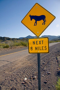 Burro Crossing Roadsign - Route #66, Oatman, Arizona.  Photo #OA-401