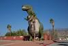 1811_Palm Springs 034