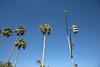 1811_Palm Springs 007