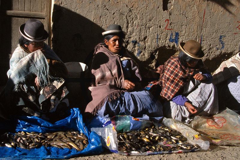 Aymara vendors selling freshwater fish, Huarina, Bolivia