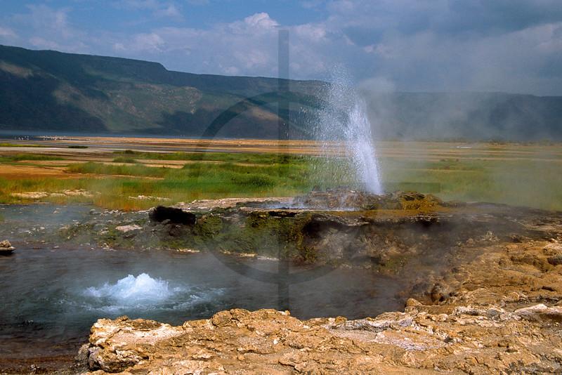 Hot spring and geyser, Lake Bogoria, Kenya