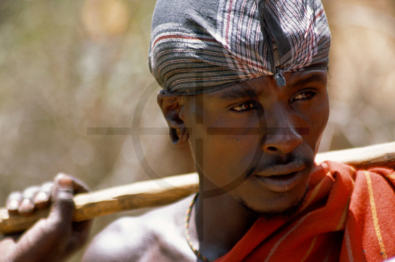 Samburu herdsman, Maralal, Kenya