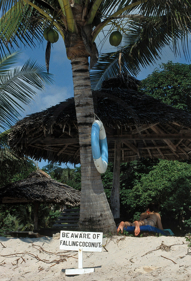 Sign warning for falling coconut(s), Diani Beach, Kenya