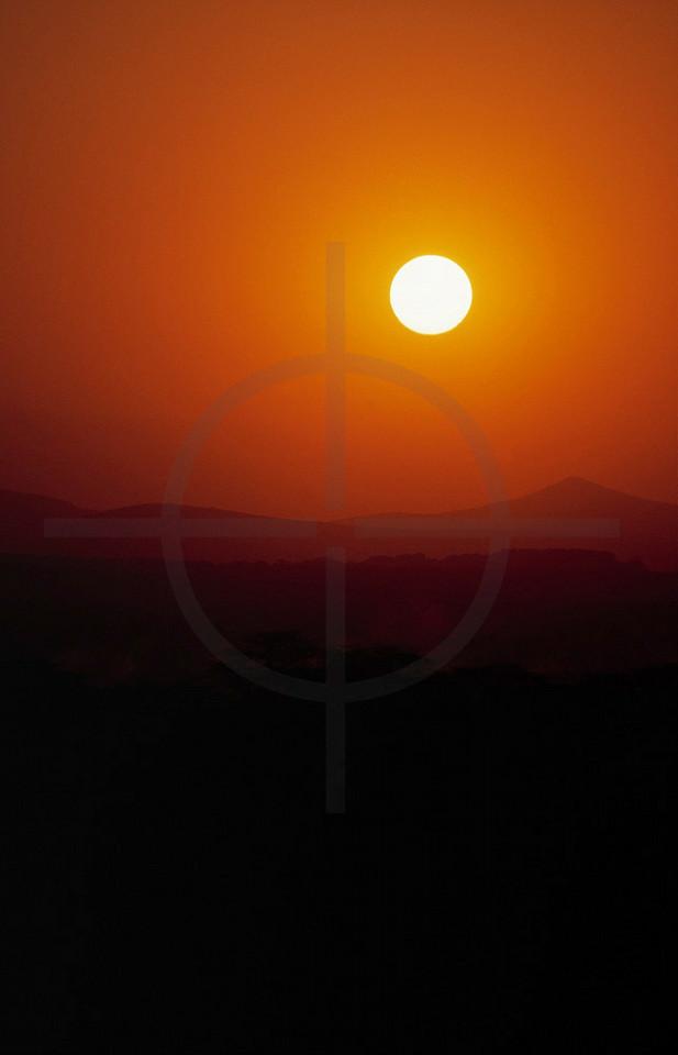 The scorching sun, Samburu National Reserve, Kenya