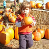Picking out a pumpkin for Michael