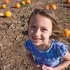 Pumpkin-25