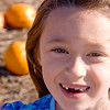 Pumpkin-24