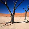 Dead trees in Dead Vlei, Namib Naukluft National Park, Namibia