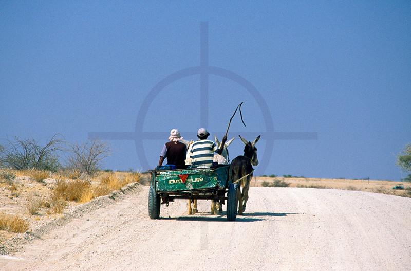 Donkey cart on dirt road near Usakos, Erongo, Namibia