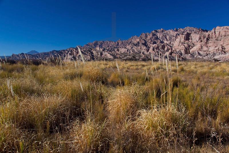 Landscape on Ruta 40 between Molinos and Angastaco, Salta, Argentina