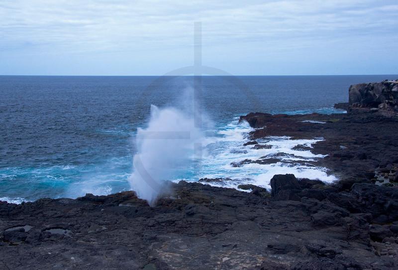 Blowhole, Punta Suárez, Española, Galápagos Islands, Ecuador