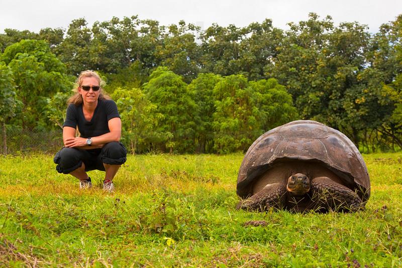 Person next to a Galápagos tortoise, Charles Darwin Research Station, Santa Cruz, Galápagos Islands, Ecuador