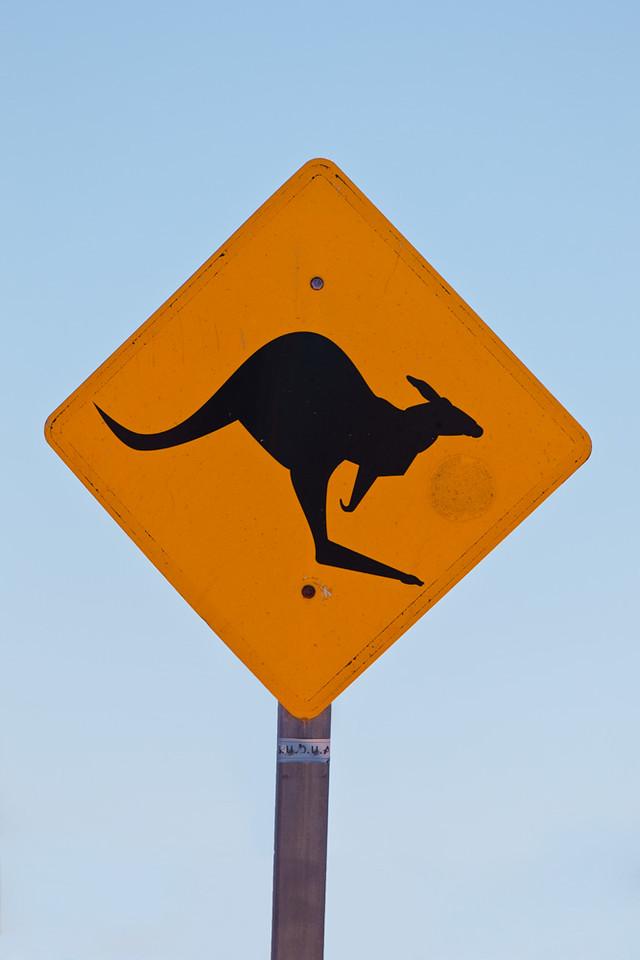 Sign warning for kangaroos crossing the road, Exmouth, Western Australia, Australia
