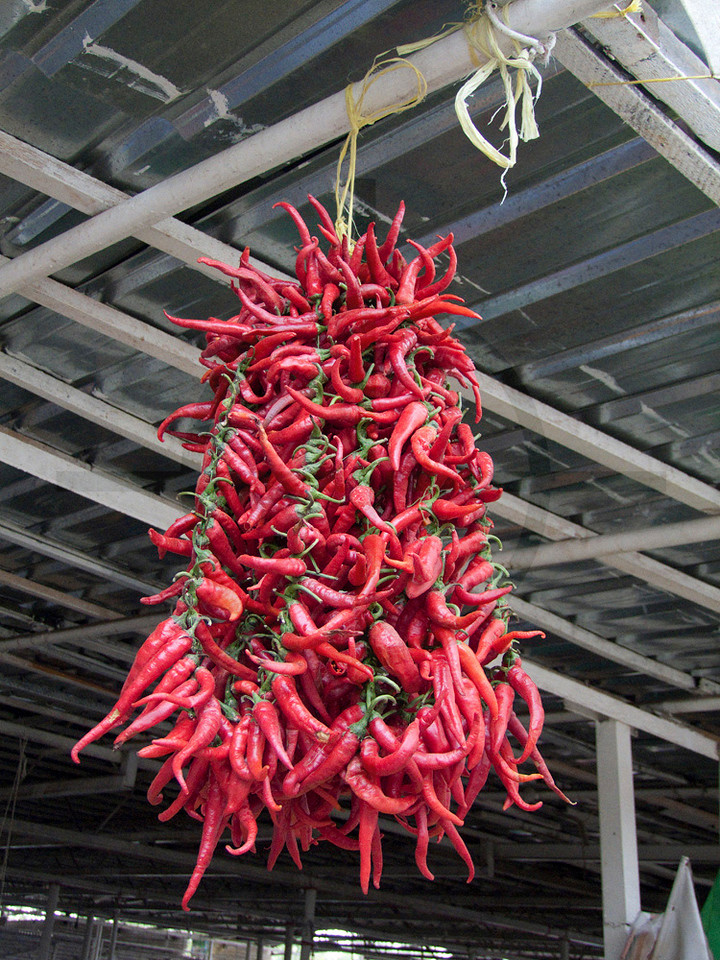 Chili peppers, food market in Dushanbe, Tajikistan