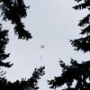 Balloon-48