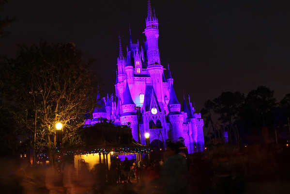2011 - Disney World
