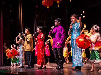 DCAA Chinese New Year 2014