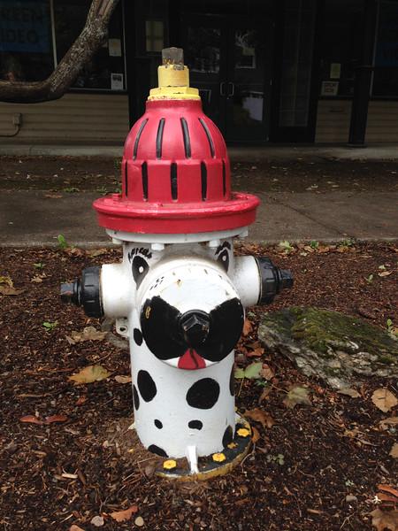 093014_Firehydrants-9