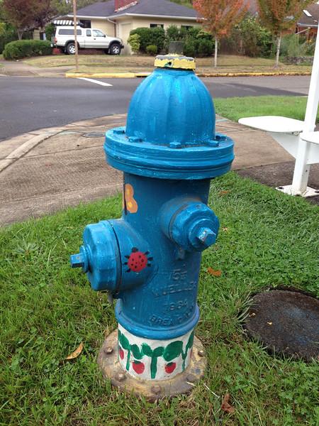 093014_Firehydrants-8