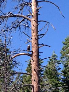 082114_Tahoe-3