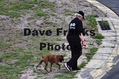Dave Franks PhotosMAY 28 2016 (16)