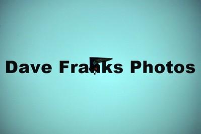 Dave Franks PhotosJULY 29 2017 (534)