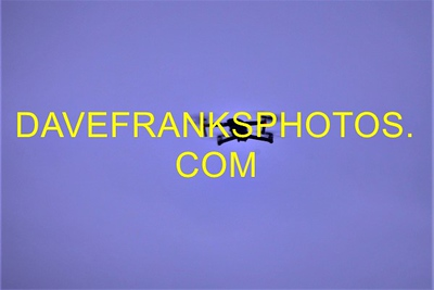 SEP 5 2020 DAVE FRANKS PHOTOS (324)