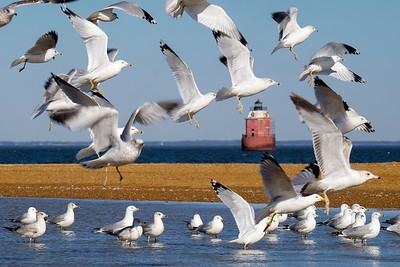 Sandy Point Shoal Lighthouse