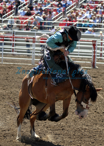 Saddleback Bronc Riding, California Rodeo