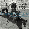 Saddleback Bronc Riding California Rodeo