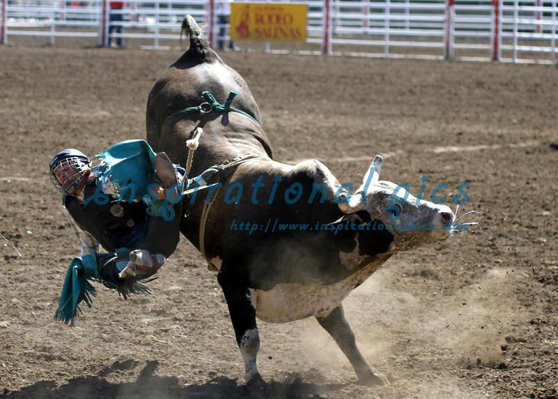 Bull Riding California Rodeo