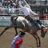 Bronc Riding California Rodeo