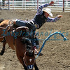Saddleback Bronc Rider California Rodeo