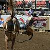 Bronc Rider California Rodeo