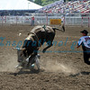Bull Riding California Rodeo