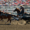 Steer Wrestling California Rodeo