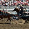 Steer Wrestling California Rodeo