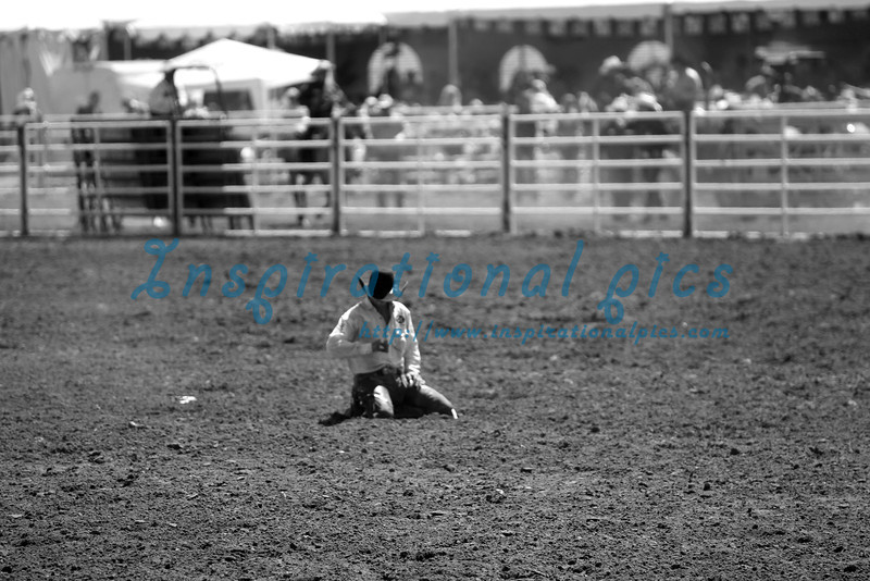 Cowboy Rodeo Show California
