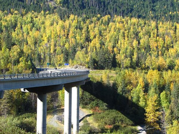 Fall colors and warm sunshine along Sixmile River on the northern Kenai Peninsula