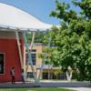 Alumni/ae Social Zoom Backgrounds