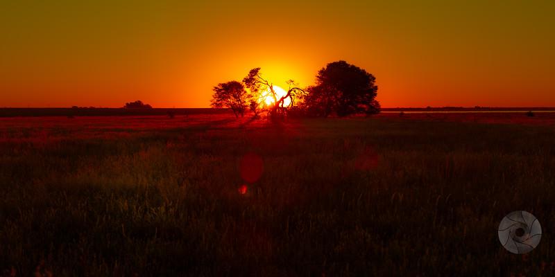 Barberspan Sunset