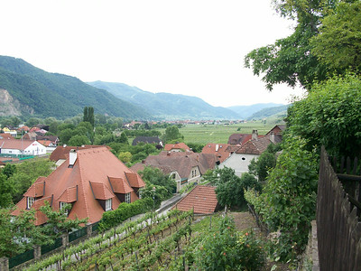 Our lunch stop was at a small Inn on a hillside overlooking the picturesque Wachau Valley in central Austria.